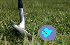 El golf busca la satisfacción de un turismo elitista.