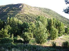 Ponferrada: el Ayuntamiento presenta un anteproyecto para convertir el Pajariel en un parque forestal (27/4/09).